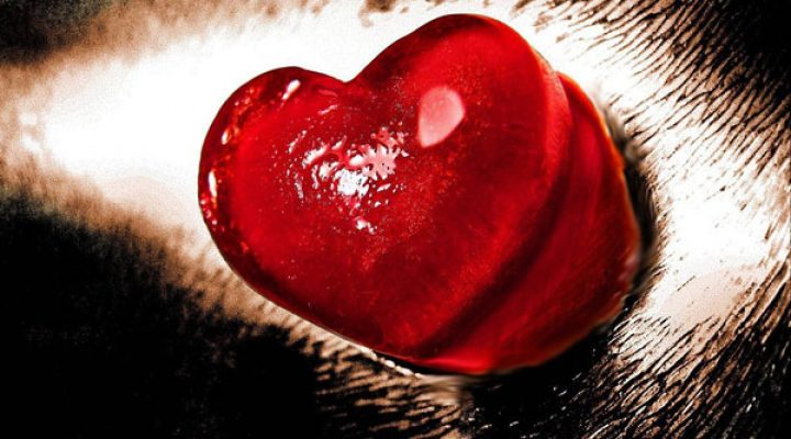 گالری عکس قلب (۲)