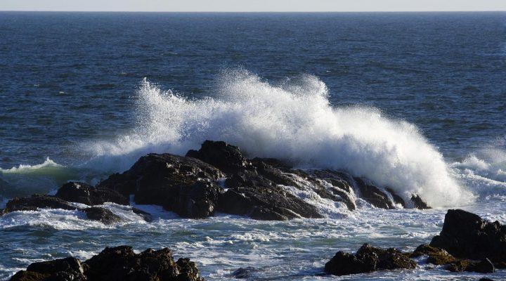 'گالری عکس موج و صخره