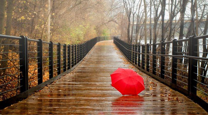 گالری عکس چتر و باران