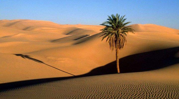 گالری عکس کویر مصر ایران