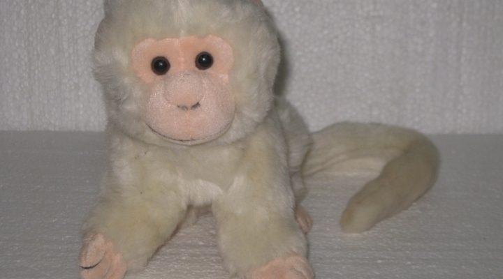 گالری عکس عروسک میمون