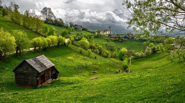 گالری عکس مراتع کوهستانی