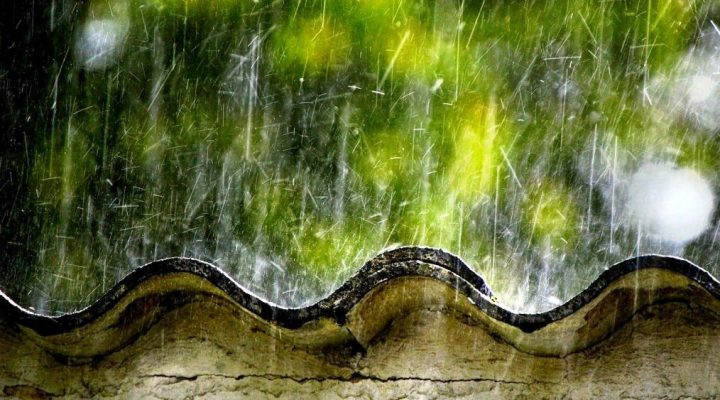 گالری عکس های بارانی