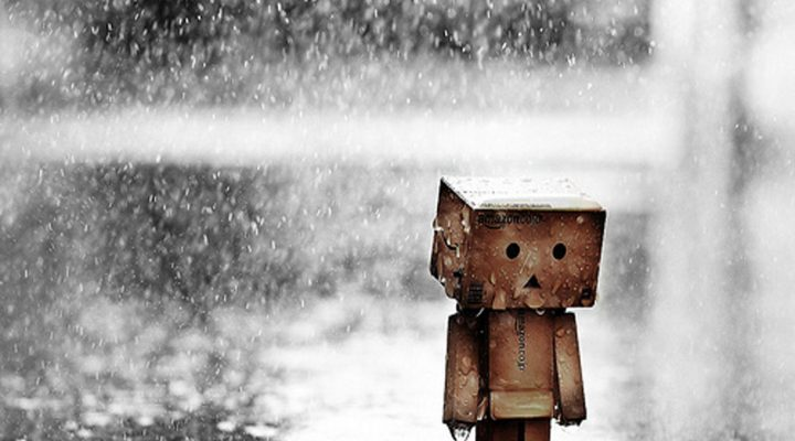 گالری عکس تنها در باران