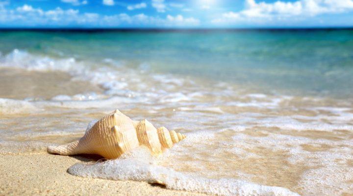 گالرس عکس موج و ساحل