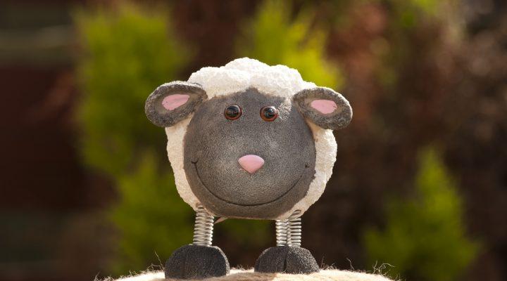 گالری عکس عروسک گوسفند