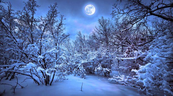 گالری عکس ماه برفی