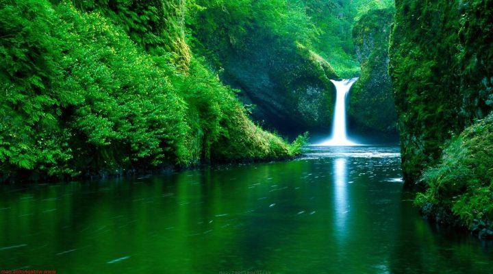 گالری عکس کوهستان سبز