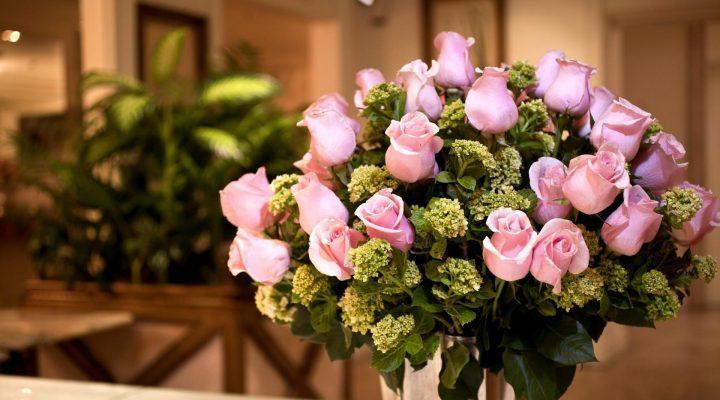 گالری عکس گل رز صورتی