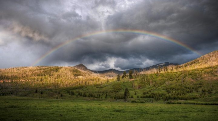 گالری عکس رنگین کمان در طبیعت