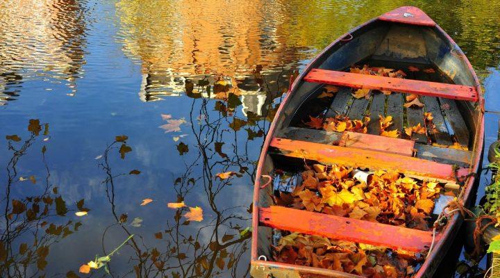 گالری عکس پاییز هزار رنگ