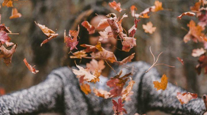 پاییز زیبا و عروس فصل هاست