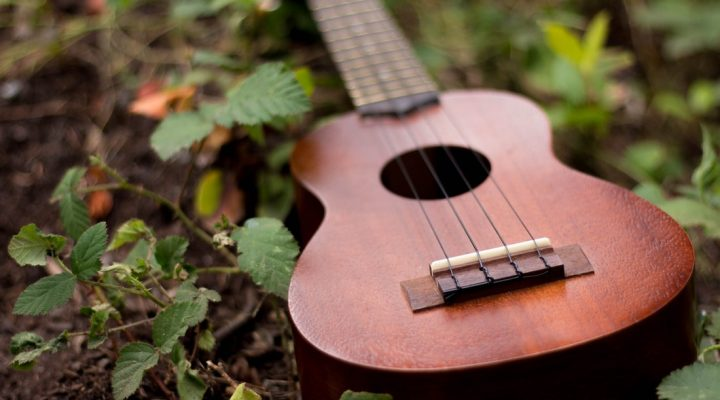 دانستنیهایی در مورد انواع گیتار